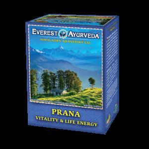 ajurvédsky čaj prana na povzbudenie vitality a životnej energie