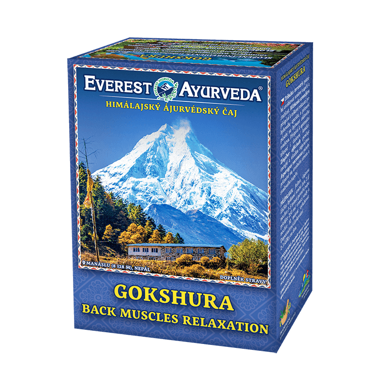 ajurvédsky čaj gokshura na bolesti chrbta a chrbtice